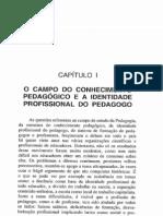 Pedagogia e Pedagogos Para Que-p17-60