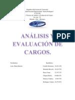 Analisis y Evaluacion de Cargos