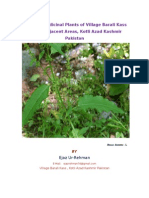Valuabe Medicinal Plants of Barali kass Kotli Azad Kashmir