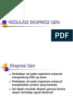 4.Regulasi Ekspresi DNA Murti 4