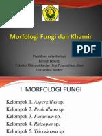 Morfologi khamir