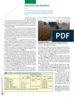 2007. Corn Response to Intensive Crop Nutrition