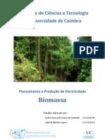 Biomassa_2009