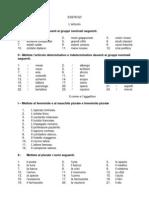 ESERCIZI_Articolo_Plurale
