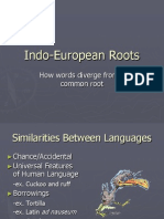 Indo European Roots