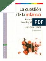 Sandra Carli, La Cuestion de La Infancia