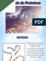 Expo de Sintesis de Proteina