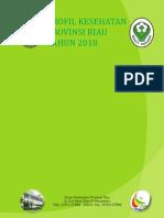 Profil Kesehatan Provinsi Riau Tahun 2010