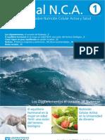 Newsletter NCA nº1 - Junio 2013.pdf