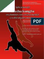 Aplicacion Del Wushu Kungfu