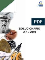 Solucionario Gua a-1 2010 OK