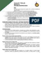 NOTAS_RESP_2010 Resumen de Sist Respiratorio