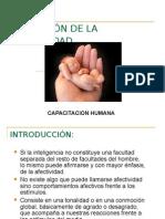 FORMACIÓN DE LA AFECTIVIDAD