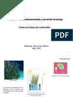 Celdas microbiana de combustible.pdf