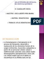 ATLAS HEMATOPOYETICO.pptx