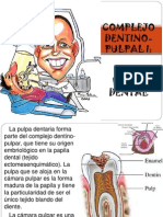 Pulpa Dental Exposicion