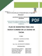 Plan de Marketing Floreria
