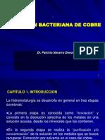 LIXIVIACION Bacteriana de Cobre