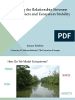 Elucidating the Relationship Between Indirect Effects and Ecosystem Stability - Presentation