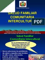 Presentacin SAFCI - Bolivia