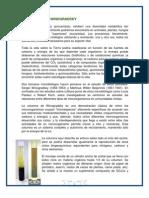 La Columna de Winogradsky.docx