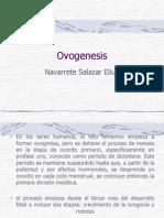 ciclo-ovarico391
