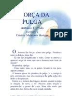 02.05 - A força da Pulga
