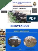 4. Rancho Del Carmen