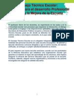 Consejo Tecnico Escolar 2013