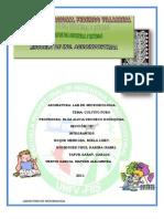 Cultivo Puro Informe 6[1]