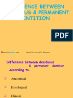 Difference Between Primary Permanent Dentition Pedo