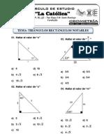 Separata n 6 - Triangulos Rectangulos Notables (Primaria)