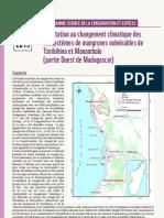 Programme de la Science de la Conservation et Espèces - Adaptation au Changement Climatique des ecosystems de mangroves vulnérables de Tsiribihina et Manambolo (partie Ouest de Madagascar) (WWF – 2013)