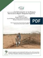 REDAF_2012 Informe Deforestacion SALTA