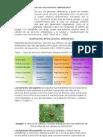 sevicios ambientales.doc
