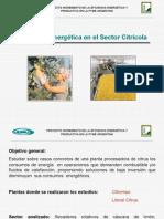 Eficiencia Energetica Sector Citricola y Azucarero
