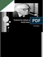 conceitosgeraisdateoriapiagetiana-110417203347-phpapp01