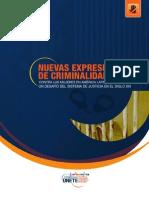 Nuevas Expr de Criminalidad