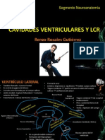 cavidades ventriculares
