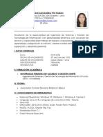 CV LuisaStephani 2013