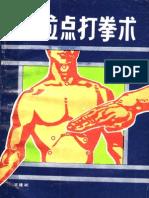 SssXueWeiDianDaQuanShu WangJianBin PDF