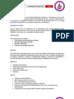 Ficha Téc...pdf