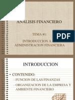 Analisis Financiero Tema 1 2013