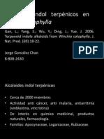 Alcaloides indol terpénicos en Winchia calophylla