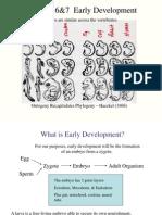 6-7 Early Development