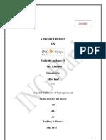 projectreportoningvysyabank-120628071436-phpapp01