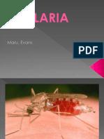 Malaria disease, its diagnosis and cure.