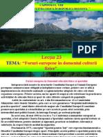 TMCF Lectia 23