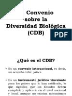convenio-diversidad-biológica 1992