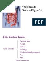 Sistema Digest Orio 1